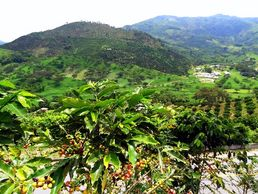 Kolumbiens Traunlandschaften während der Kolumbien Abenteuer Rundreise