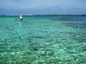 stand up paddle Los roques