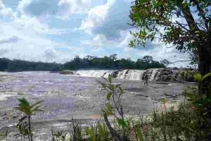 fluss chiribiquete nationalpark