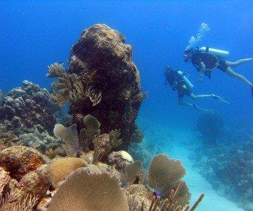 Unterwasser in der dominikanische Republik