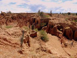 Unterwegs zu historischen Schätzen in der Wüste Kolumbiens