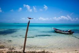 Boot in Los Roques