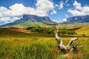 Landschaft der Gran Sabana