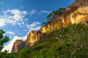 Roraima in der Gran Sabana