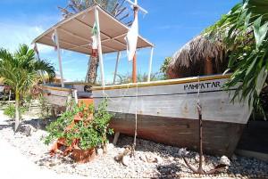 kunst im stevie wonderland auf Margarita