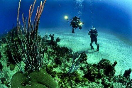Tauchen in Bonaire