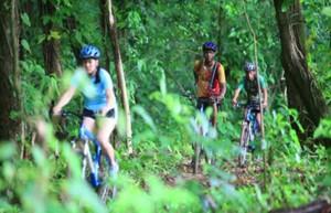 Mountainbiker im tropischen Wald